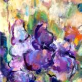 Irises - SOLD