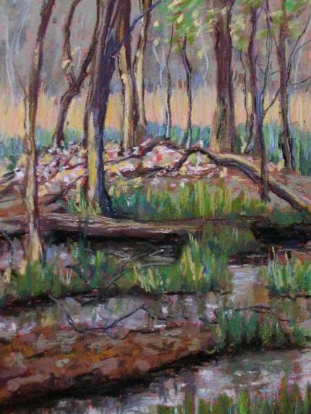 """Woodland Marsh"""