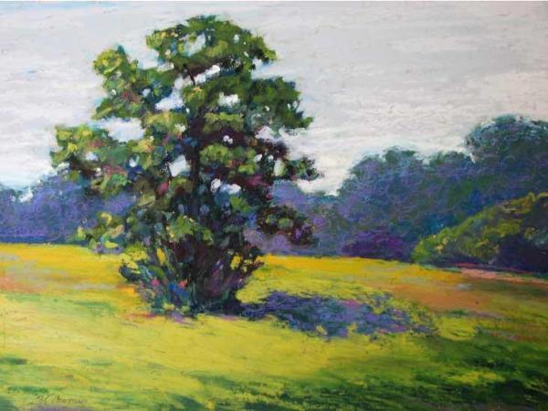 """""""Summer Tree"""""""